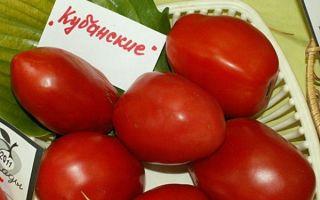 Томат кубань: характеристика и описание сорта, отзывы, фото, урожайность – все о помидорках