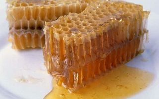 О меде в сотах: как употреблять, можно ли проглатывать пчелиные соты