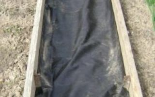 О посадке клубники на агроволокно в открытый грунт весной (схема, описание)