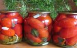 """Замороженные помидоры с зеленью на зиму, рецепт с фото """"пальчики оближешь"""" – все о помидорках"""