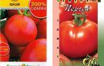 Томат персей: характеристика, описание сорта, отзывы, фото, урожайность – все о помидорках