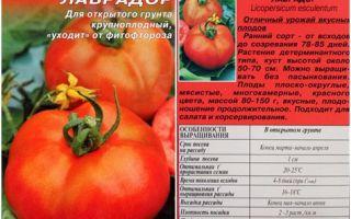 Томат лабрадор: характеристика и описание сорта, отзывы, фото, урожайность – все о помидорках