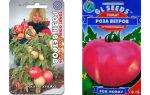 Томат «роза ветров»: особенности сорта, описание, урожайность, отзывы – все о помидорках