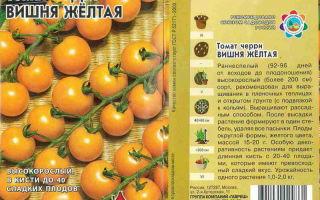 Томат вишня желтая: характеристика сорта, описание, отзывы, урожайность – все о помидорках