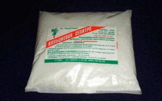 О кальциевой селитре для огурцов: как подкармливать культуру, когда удобряют аммиаком