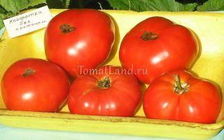 Томат конфетка без косточек: характеристика и описание сорта, отзывы, фото, кто сажал – все о помидорках