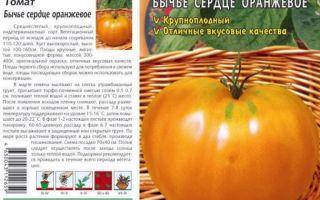 Томат «бычье сердце оранжевый»: описание сорта, характеристика, выращивание, отзывы, фото – все о помидорках