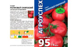 Томат ожаровский малиновый: характеристика и описание, отзывы, фото, урожайность сорта – все о помидорках