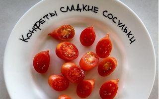 Томат конфеты сладкие сосульки: характеристика и описание сорта, урожайность, фото, отзывы – все о помидорках