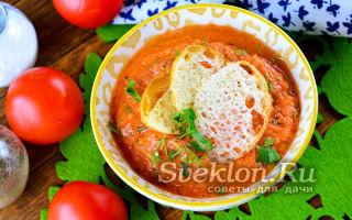 Томатный суп-пюре – классический рецепт с фото пошагово со сливками – все о помидорках