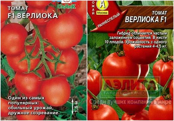 Томат Верлиока фото характеристика и описание сорта отзывы урожайность