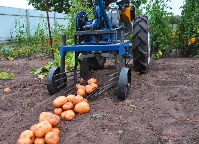 О картофелекопалках: какая лучше транспортерная, грохотная, вибрационная
