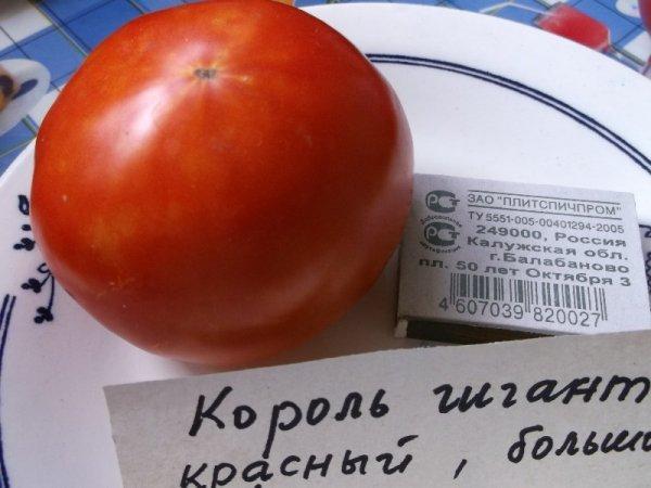 Король гигантов: описание сорта томата, характеристики, агротехника