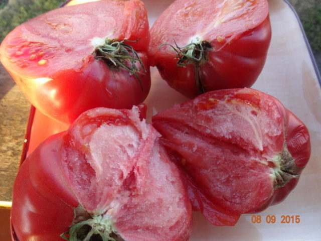 Малиновый рай: описание сорта томата, характеристики помидоров, посев