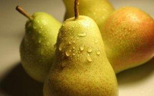 О лучших сортах груши для урала: какие сорта лучше выбрать и их особенности