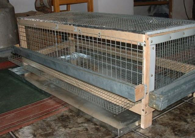 О клетке для кур своими руками (клеточное содержание куриц в домашних условиях)