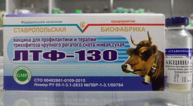 О применении в ветеринарии вакцины лтф 130 для крс (крупного рогатого скота)