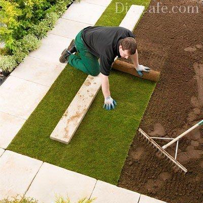 О газонной траве в рулонах: что это, как выглядит, где используется