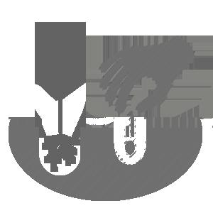 О лилии фризо (что такое от-гибриды, описание и характеристики данного сорта)