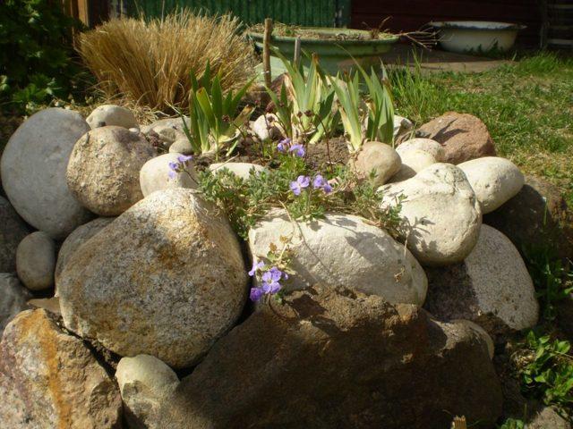 О клумбах из камней: как выложить, покрасить, оформить, пошаговое руководство