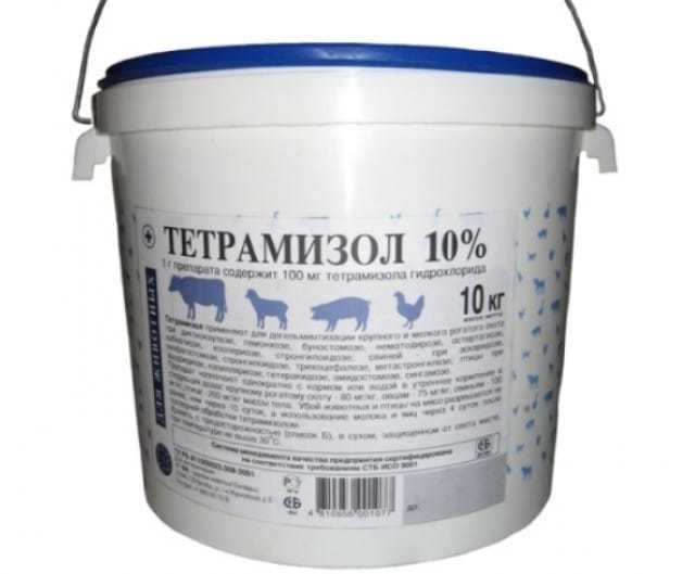 О применении тетрамизола 10 от глистов у свиней и поросят: пошаговая инструкция