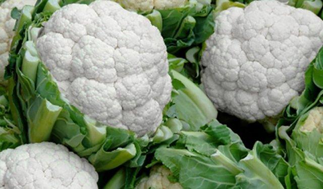 О капусте сноуболл: описание, выращивание и уход за цветной капустой