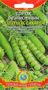 О горохе амброзия: описание и характеристики сорта, посадка, уход, выращивание
