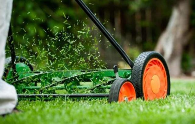 О мульчировании в газонокосилках: что это такое, описание, как выбрать