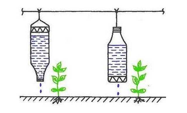 О капельном поливе своими руками: как сделать систему капельного полива без затрат