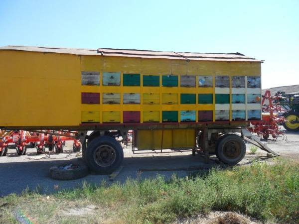 О кочевой пасеке: передвижная пасека на колесах, кочевое пчеловодство