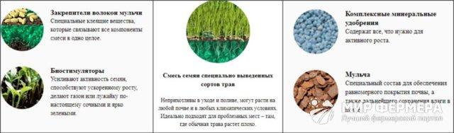 О жидком газоне: описание, напыление своими руками, инструкция по применению