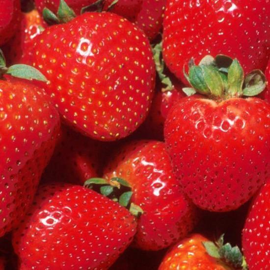О клубнике корона: описание сорта, агротехника посадки и выращивания