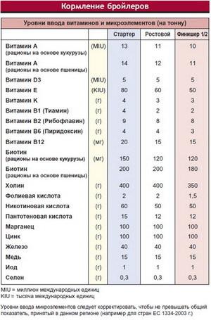 О породе бройлеров кобб 500: описание и характеристики, вес по дням (таблица)