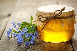 О гречишном меде: состав, лечебные свойства, когда собирают, из чего делают