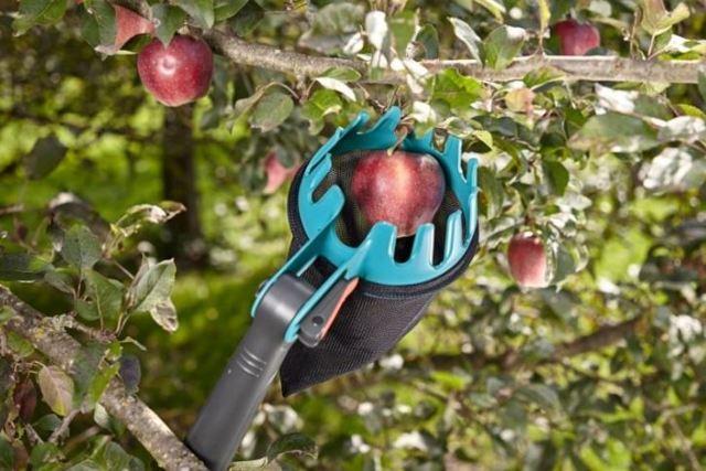 О плодосборниках для ягод: жук, описание, характеристики, принцип эксплуатации