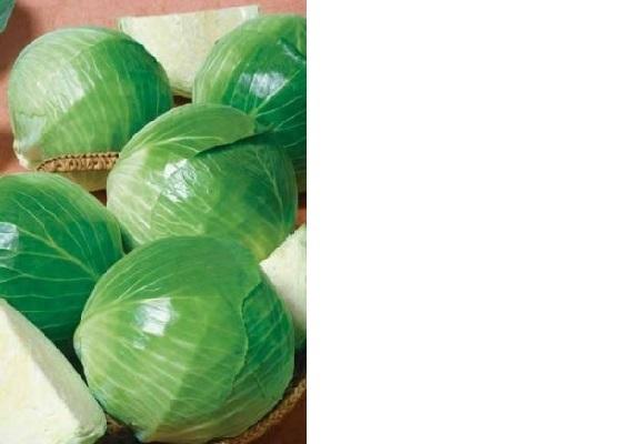 О лучших сортах капусты для сибири, выращивание в открытом грунте