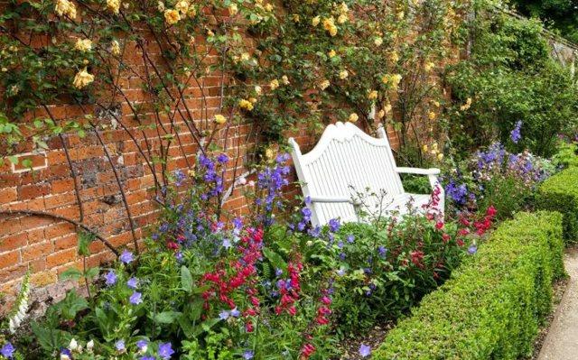 О многолетних цветах для дачи: как благоустроить дачный сад красивой клумбой