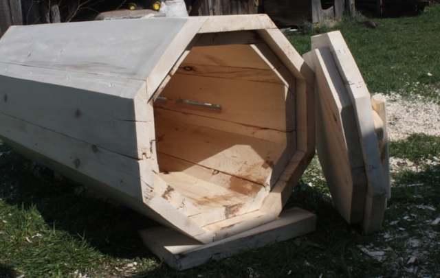 О колодном пчеловодстве: колода, борть для пчел своими руками, чертежи