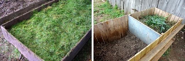 О первой стрижке газона после посадки: когда и как стричь в первый раз