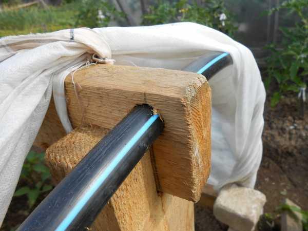 О грядке для кабачков: как сделать своими руками теплый парничок, клумбу