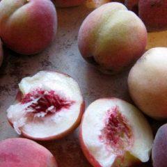 О выращивании персика из косточки в домашних условиях, как прорастить
