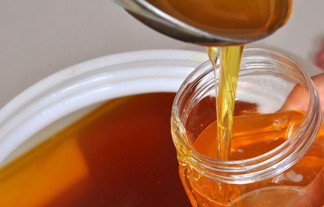 О красном меде: почему называют галлюциногенным, гималайские пчелы