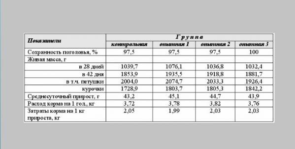 О породе бройлеров арбор айкрес (эйкерс): описание и характеристики, выращивание