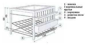 О клетках для бройлеров своими руками в домашних условиях: размеры, чертежи