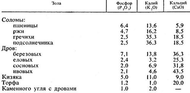 О клубнике вима рина: описание и характеристики сорта, посадка, уход