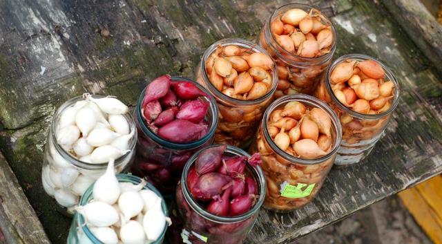 О хранении лука севка: как сохранить до посадки, хранение в домашних условиях